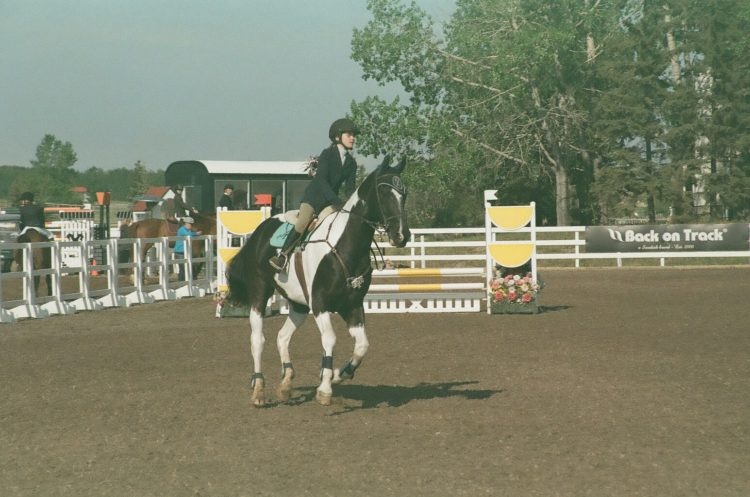 a horse named Kolor Kode is show jumping