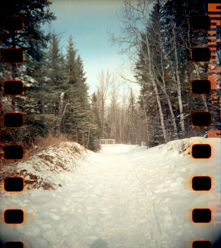 snow-covered trail in Fish Creek Park