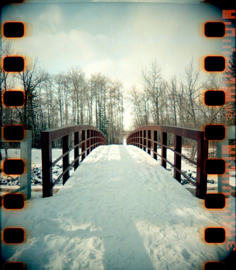 a bridge in Fish Creek Park