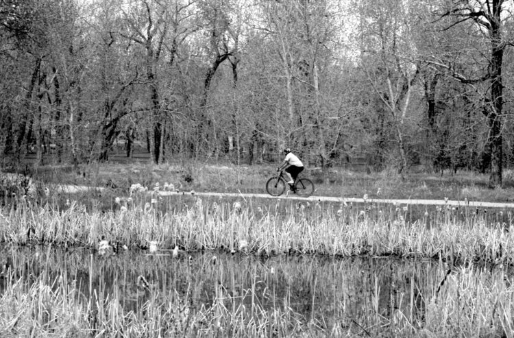 man riding a bike in Pearce Estate Park