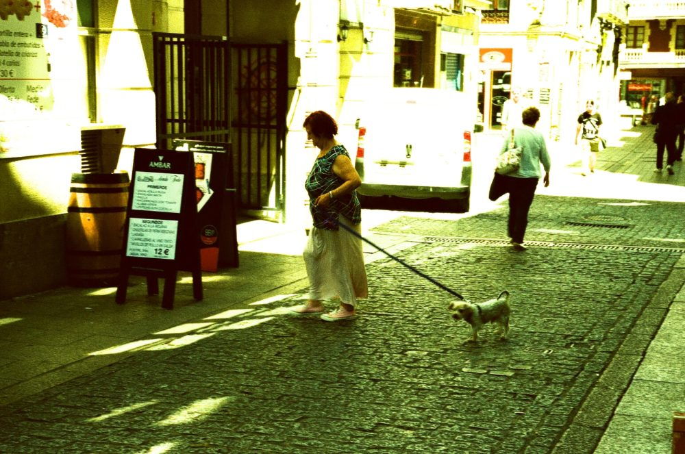 woman and dog in San Sebastián, Spain