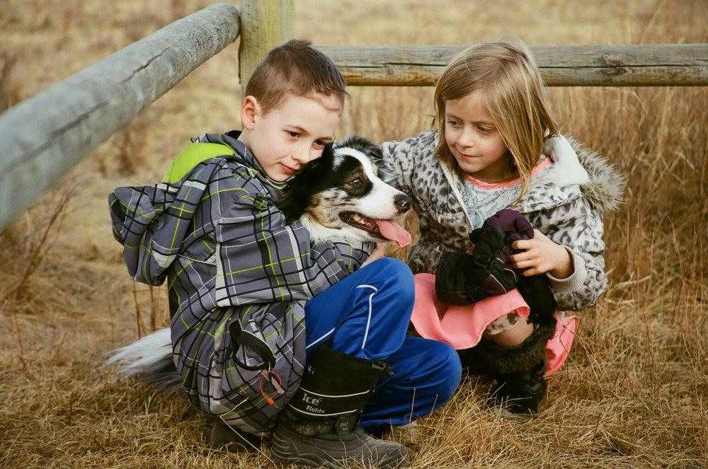 dog & children at Glenbow Ranch Provincial Park