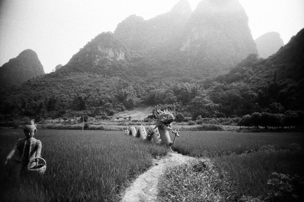 Yangshuo countryside wicker dragon on Double-X 5222 film