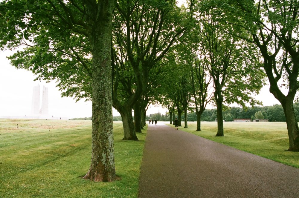 The walk to the Vimy Memorial.