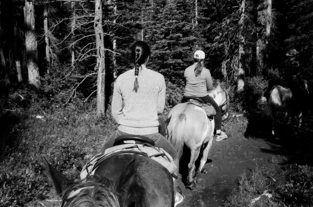 horseback riding up to the Lake Agnes Teahouse
