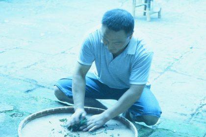 bruising tea leaves in Emeishan, China