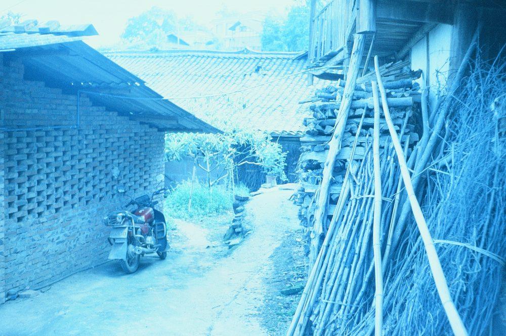 a tea plantation in Emeishan, China