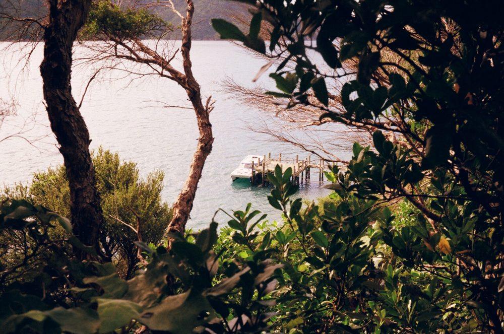 looking down on our catamaran from Motuara Island, NZ
