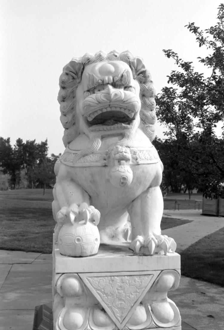 lion statue at Sien Lok Park, downtown Calgary, Canada