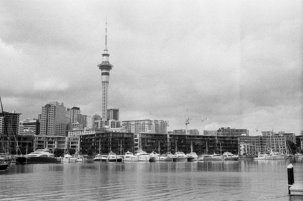 Auckland harbour & the Sky Tower