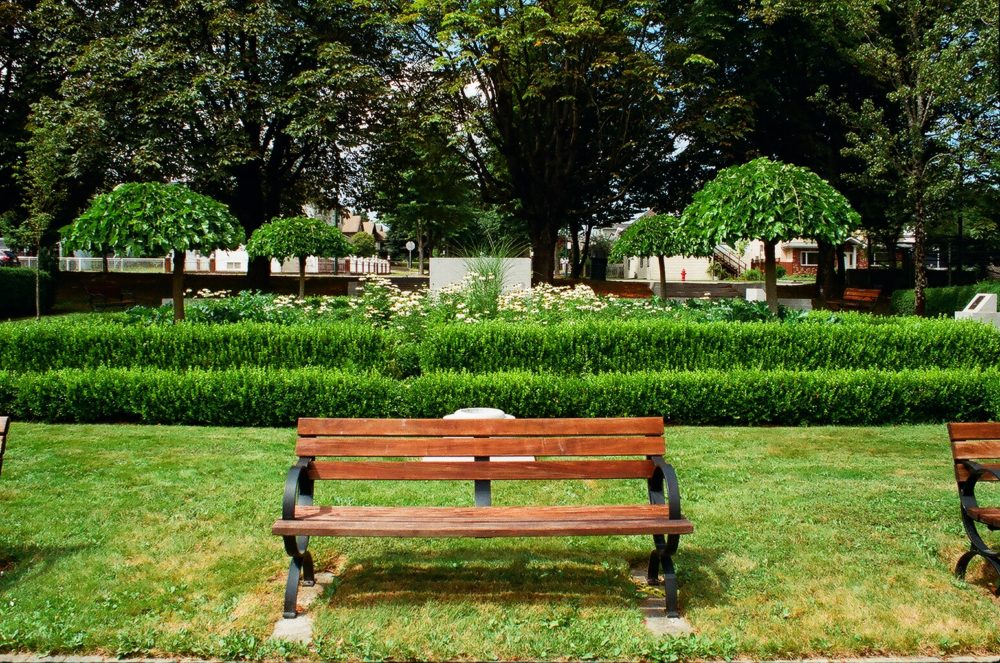 bench at Hastings Park, Vancouver, BC