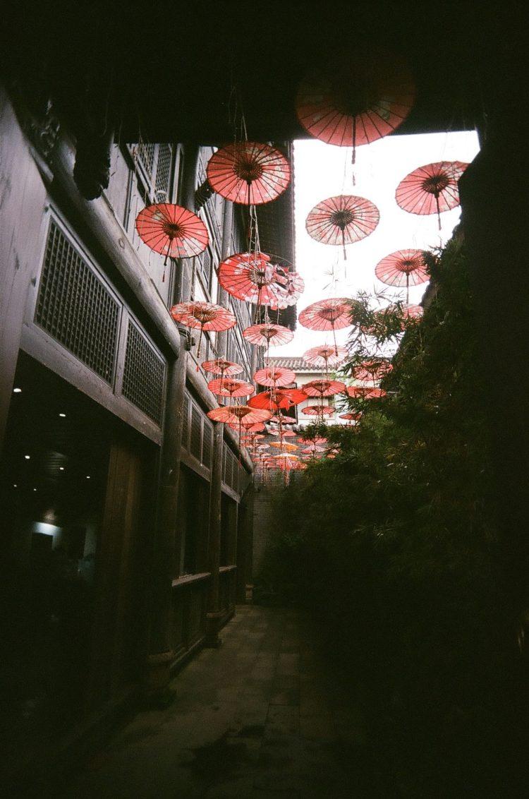 umbrellas at Chengdu People's Park